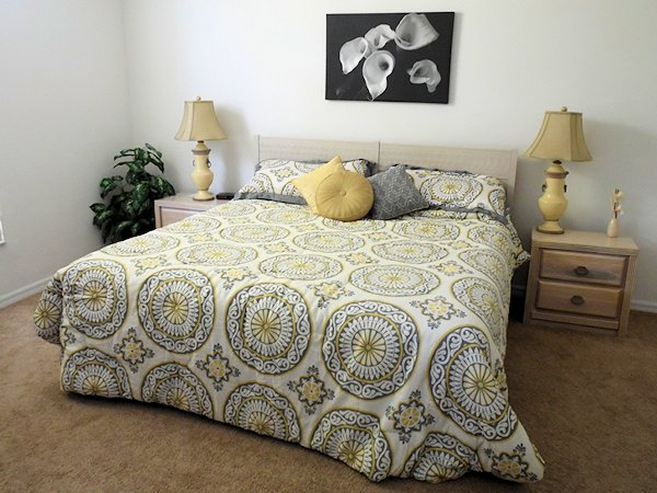 Front Master bedroom with king size bed.